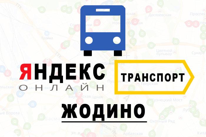 Яндекс транспорт в городе Жодино