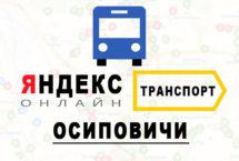 Яндекс транспорт в городе Осиповичи