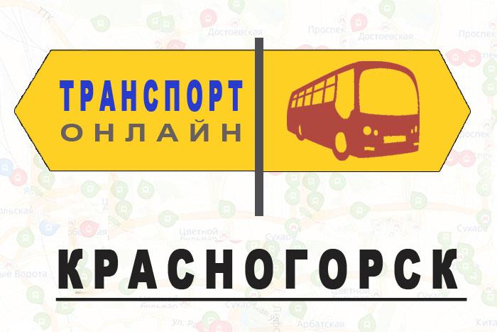 Яндекс транспорт онлайн Красногорск