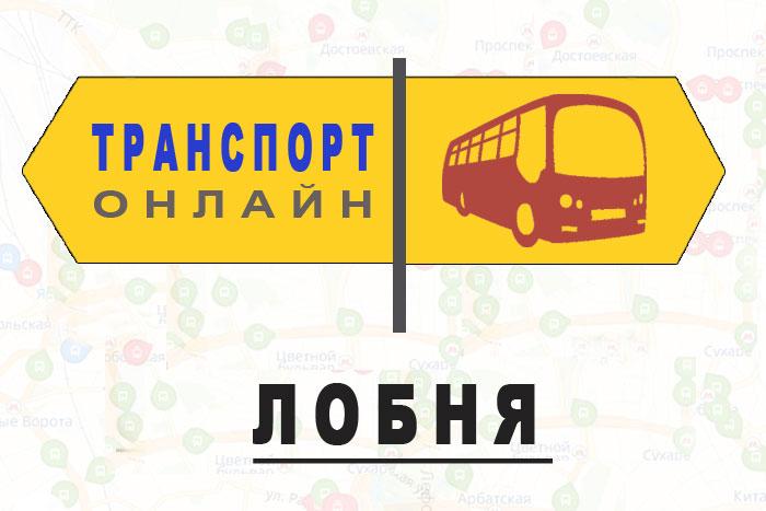 Яндекс транспорт онлайн Лобня