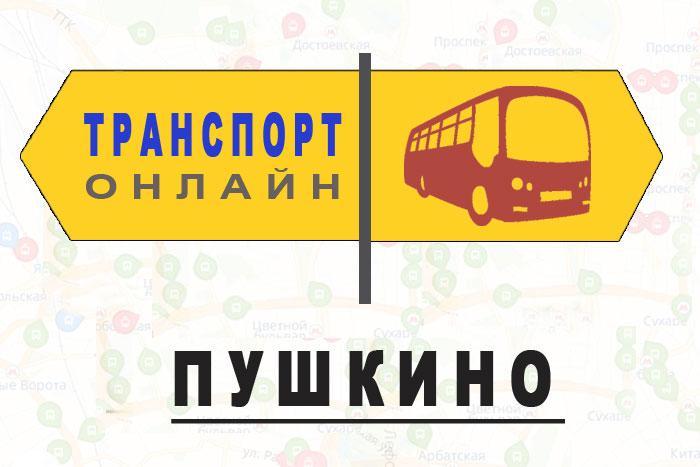 Яндекс транспорт онлайн Пушкино