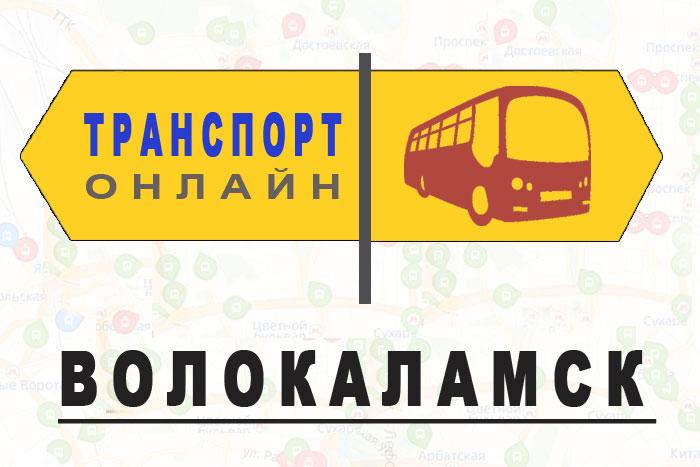 Яндекс транспорт онлайн Волокаламск