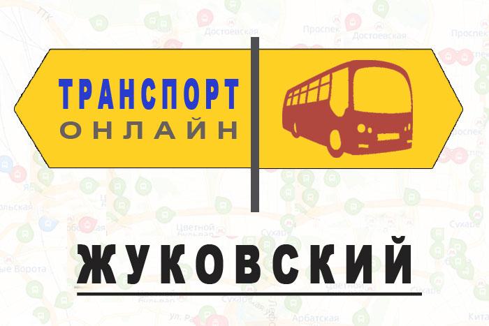 Яндекс транспорт онлайн Жуковский