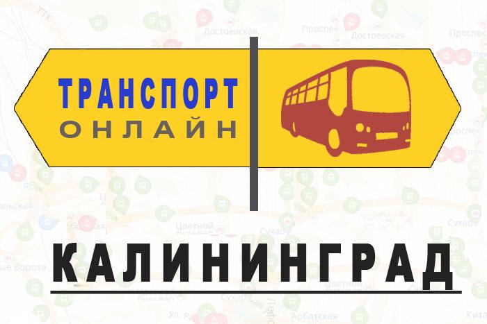 Яндекс транспорт онлайн Калининград