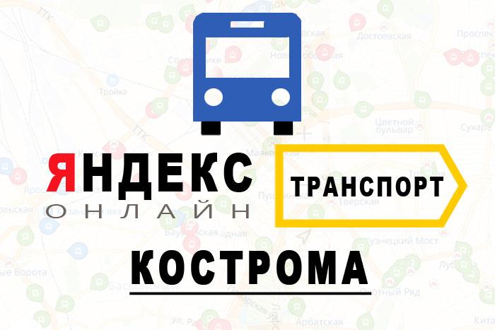 Яндекс транспорт онлайн Кострома