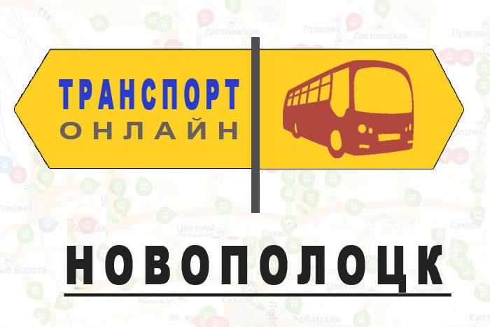 Яндекс транспорт онлайн Новополоцк