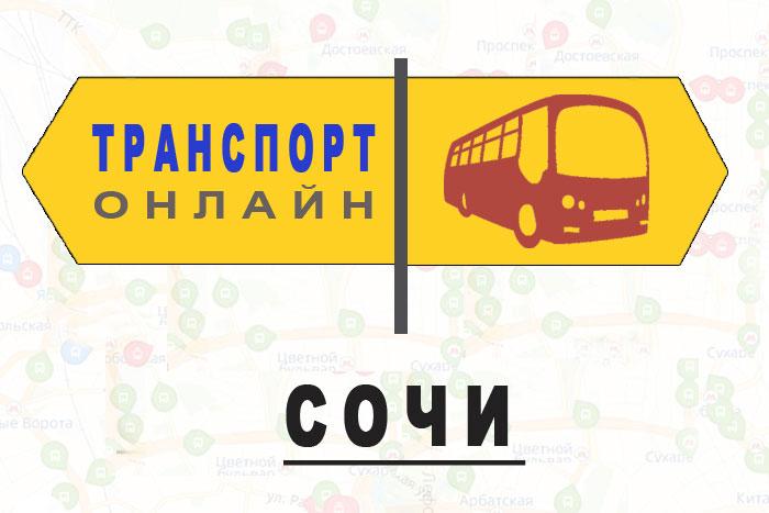 Яндекс транспорт онлайн Сочи